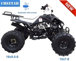 "Tao Tao ""Cheetah 125G"" Sport ATV Automatic with Reverse, Rear Rack, Remote Start/Kill, 19""/18"" Big Tires on 8"" Rims. Free shipping to door with a free helmet."