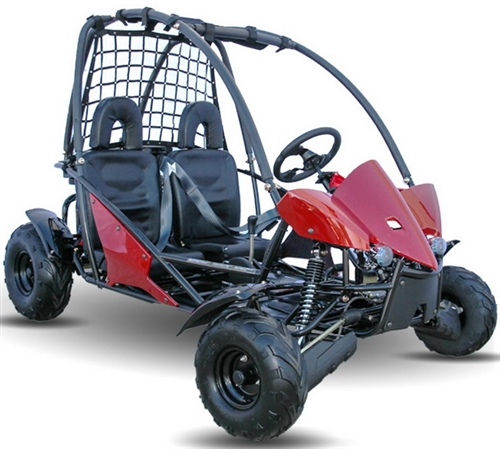 KD 125GKT 3 kandi big cat 125cc 2 seater go kart kd 125gkt fully automatic w  at reclaimingppi.co