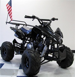 "KANDI 110cc ""Panther"" ATV Fully automatic with Reverse MDL-GA004-3"