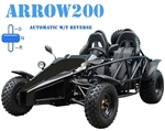 TAO TAO ARROW 200 Go Kart 200cc Buggy 2-Seater Racing style with Spare Tire, Automatic Transmission with Reverse, free shipping to your door, free DOT approved motocross helmet, 6 months bumper to bumper warranty.