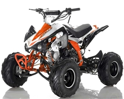 "125cc ""Panther"" FULL SIZE  ATV Fully Automatic+Reverse, Foot gear shifter, 7"" Wheels, Free Large Luggage Rack (ATV-120-125). Free shipping to your door including a free helmet."