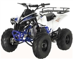"""SPORTRAX"" FULL SIZE 125CC ATV Fully Automatic+Reverse, Foot gear shifter, 8"" Wheels, Free Large Luggage Rack (ATV-121L-125). Free shipping to your door including a free helmet."