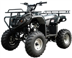 "TAOTAO FULL SIZE 125cc ATV Semi-Automatic 3-Speed with Reverse, Remote Kill, 21"" Big Tires, 8"" Wheels, ATV-125F1. Free shipping to your door. Free DOT approved motocross helmet. 6 month bumper to bumper warranty."