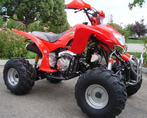 taotao 250cc raptor style atv water cooled 4 speed w. Black Bedroom Furniture Sets. Home Design Ideas