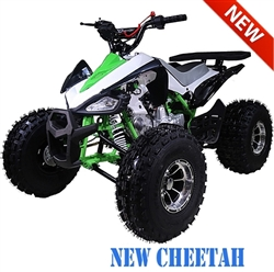 "Tao Tao ""New Cheetah"" 125cc ATV Automatic with Reverse, Upgraded Front Bumper, Rear Rack, Muffler, Tires, Wheels, Air Filter... Remote Start/Kill, 19""/18"" Big Tires, 8"" Chrome Wheels, LED light. Free shipping to door with a free helmet."