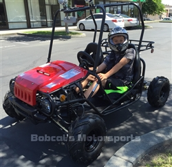 "Tao Tao ""Jeep Auto"" 110cc 2 Seater Youth Go Kart Automatic with Reverse Adjustable Speed from 15~35 MPH"
