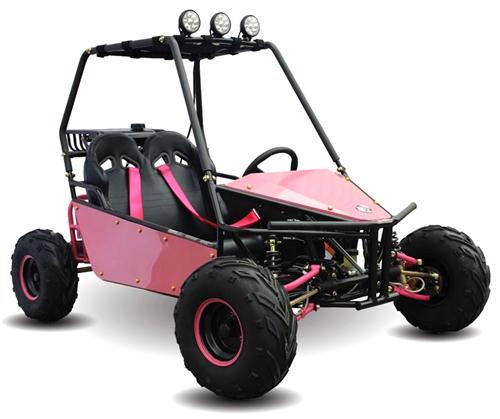 Kandi 125cc 2 Seater Go Kart KD-125GKM Automatic w/ Reverse Dual Disc  Brakes LED Lights Large Legroom, 7
