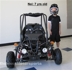 "TAO TAO GK110 110cc Double Seater Youth Go kart Fully Automatic w/ Reverse, Remote, Governor, Sun Shade, 7"" Big Tires"