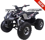 "Tao Tao ""New TFORCE"" 125cc ATV Automatic with Reverse, Upgraded Frame,Wheels,Muffler,Suspensions, Remote Start/Engine Kill, 19""/18"" Big Tires 8"" Chrome Wheels, LED light. Free shipping to door, free motocross youth helmet. 6 months warranty."