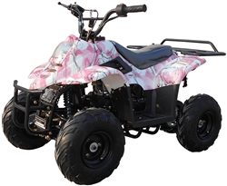 "CARB APPROVED ICE BEAR 110cc Youth ATV Fully Automatic w/ Remote Control, 6"" Tires (PAH110-2), 110cc Kids Quads, 4 stroke, fully automatic with remote starter, anti-theft security system, and engine kill. Free shipping to door, free DOT motocross helmet."