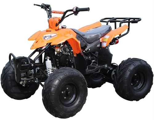 ice bear big raptor 125cc atv automatic with reverse. Black Bedroom Furniture Sets. Home Design Ideas