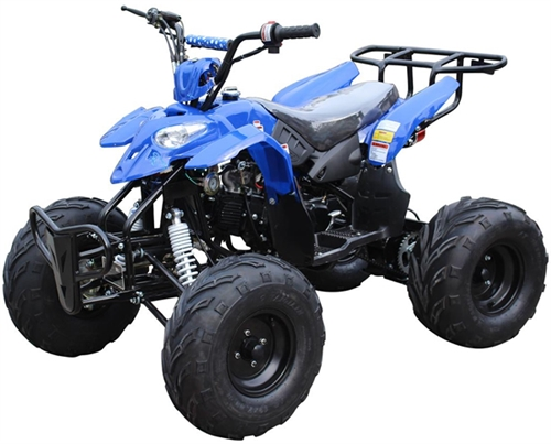 ice bear big raptor 125cc atv automatic with reverse remote kill foot gear shifter 19. Black Bedroom Furniture Sets. Home Design Ideas