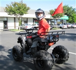 "ICE BEAR ""Big Hunter"" 125cc Utility ATV Automatic with Reverse, LED Light, Remote engine Kill, 19"" Big Tires, 8"" Rims, PAH125-8E. Free shipping to your door, free helmet."