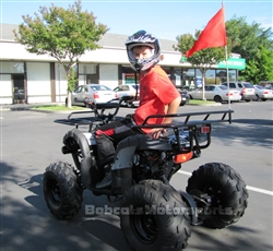 "ICE BEAR ""Big Hunter"" 125cc Utility ATV Automatic with Reverse, LED Light, Remote Stop, 19"" Big Tires, Matching Colored Frame, Wheels & Handlebar grips! PAH125-8E. Free shipping to your door, free DOT motocross helmet. 6 month bumper to bumper warranty."