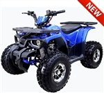 "Tao Tao ""Raptor"" 125cc ATV Automatic with Reverse, Upgraded Swimarm,Muffler,Suspensions,Footrest, Remote Kill, Digital Dash, 19""/18"" Tires 8"" Big Chrome Wheels, LED light. Free shipping to door, free motocross youth helmet. 6 months warranty."