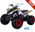 "Tao Tao REX 125cc ATV Automatic with Reverse, Upgraded Bumper, LED, Hand-guards, Remote Stop, 19""/18"" Big Tires 8"" Colored Wheels, LED light. Free shipping to door, free motocross youth helmet. 6 months parts warranty."